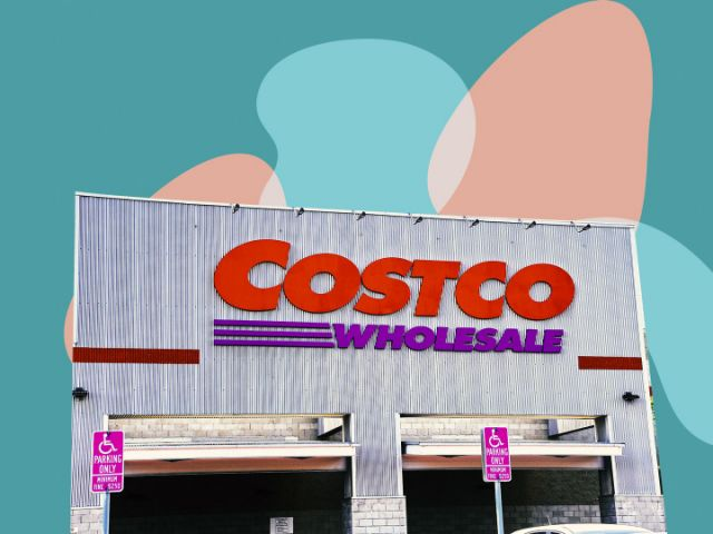 Attention Houseplant Addicts – Costco Is Selling The Cutest New Succulents